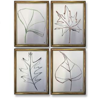 SET OF FOUR Botanical Leaves 'Sacred Tree', 'London Plane', 'Red Oak' & 'Ginkgo', Gouache on Paper in Antique Carved Wood Bamboo Style Gold Gilt Frames (B628)