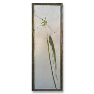 'White Tulip' Gouache on Board in Silver Gilt Frame with Gold inner slip (B889)